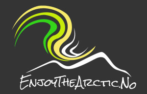 enjoy the arctic logo