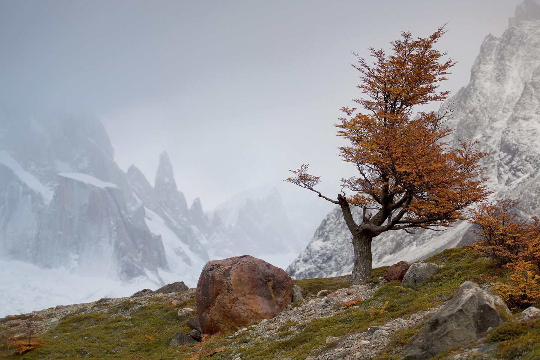 Patagonia-6-7